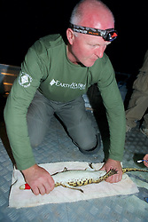 Piers Turner Holding Crocodile