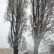 A street scene in Queenstown after the biggest snow storm in New Zealand in the past 50 years. Queenstown, New Zealand, 16th August 2011. Photo Tim Clayton