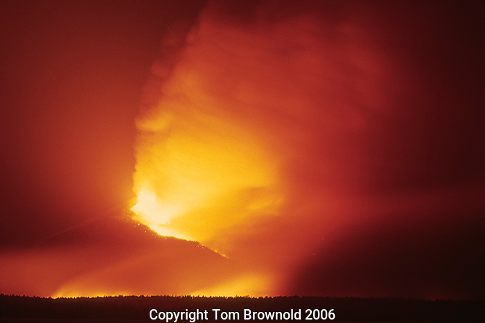A Fire storm erupting within a lightening caused Forest Fire
