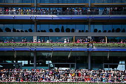 © Licensed to London News Pictures. 21/06/2018. London, UK. Racegoers , including HRH Queen Elizabeth II (pictured right in pink) watch over the parade ring at Ladies Day at Royal Ascot at Ascot racecourse in Berkshire, on June 21, 2018. The 5 day showcase event, which is one of the highlights of the racing calendar, has been held at the famous Berkshire course since 1711 and tradition is a hallmark of the meeting. Top hats and tails remain compulsory in parts of the course. Photo credit: Ben Cawthra/LNP
