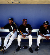 SARASOTA, FL-MARCH 1994:  NBA Hall of Famer Michael Jordan jokes with teammates in the dugout prior to his first professional game as a member of the Chicago White Sox during spring training in Sarasota, Florida in March 1994.  (Photo by Ron Vesely)