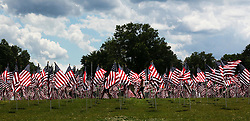 May 29, 2017 - Cincinnati, Ohio, U.S - 800 Flags stand tall in a light wind On May 29,2017 in the Arlington Memorial Garden in Cincinnati,Ohio . During part of the Memorial Day events for Men and Woman an there family's  who have lost someone in the Military  to  pay there  respects  those who lost there life. (Credit Image: © Ernest Coleman via ZUMA Wire)