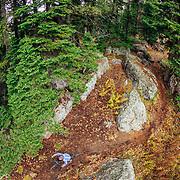 Heather Goodrich rides autumn Singletrack on Teton Pass in Wyoming.