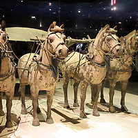 Asia, China, Shaanxi, Xian. Terra Cotta warriors horses and carriage.