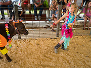 "27 JUNE 2019 - CENTRAL CITY, IOWA: PAIGE MARTIN, 7, and her calf, Joe, at the Kiddie Calf Show at the Linn County Fair. Participants dressed the calves up to reflect ""Fairadise,"" the theme of the 2019 Linn County Fair. Summer is county fair season in Iowa. Most of Iowa's 99 counties host their county fairs before the Iowa State Fair, August 8-18 this year. The Linn County Fair runs June 26 - 30. The first county fair in Linn County was in 1855. The fair provides opportunities for 4-H members, FFA members and the youth of Linn County to showcase their accomplishments and talents and provide activities, entertainment and learning opportunities to the diverse citizens of Linn County and guests.           PHOTO BY JACK KURTZ"