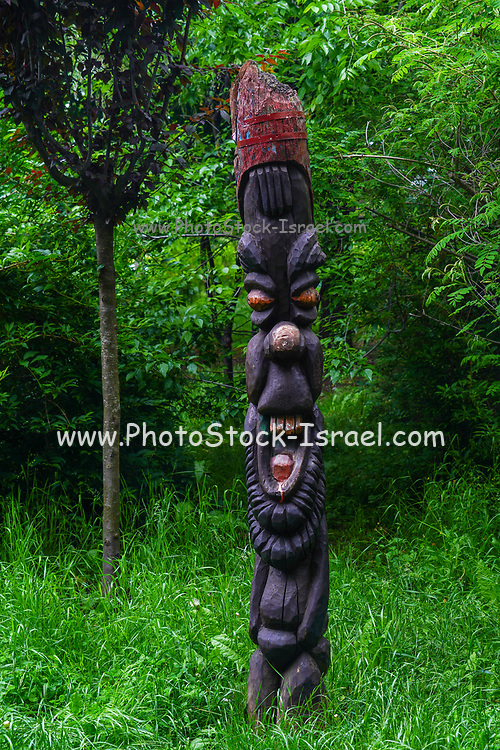 Carved wooden sculpture protecting the forest Photographed in Romania