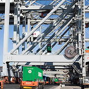 Nederland Zuid-Holland Rotterdam  27-08-2009 20090827 Foto: David Rozing .Serie over logistieke sector.ECT Delta terminal in de haven van Rotterdam. Robotgestuurde wagens vervoeren de containers op de terminal. Transport naar de automatische kranen waar de containers op een zeeschip wordfen geladen. .ECT,European Container Terminals, at the Port of Rotterdam. Europe's biggest and most advanced container terminal operator, handling close to three- quarters of all containers passing through the Port of Rotterdam. ECT is a member of the Hutchison Port Holdings group (HPH), the world biggest container stevedore with terminals on every Continent. At the ECT Delta Terminal unmanned, automated guided vehicles  so called AGVs  transport the containers between ship and stack. In the stack, unmanned automated stacking cranes ( ASCs ) ensure that the containers are always stacked in the correct place. Terminal operations are highly automated for discharging and loading large volumes, wagen, wagens, wagon, wagons, wereldhandel, werk, werkzaamheden, zeehaven, zeehavens..Holland, The Netherlands, dutch, Pays Bas, Europe .Foto: David Rozing