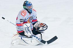 Michal Fikrt (HK Acroni Jesenice, #37) during ice-hockey match between HDD Tilia Olimpija and HK Acroni Jesenice in 41st Round of EBEL league, on Januar 23, 2011 at Hala Tivoli, Ljubljana, Slovenia. (Photo By Matic Klansek Velej / Sportida.com)