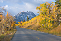Autumn along the Going To The Sun Road, Glacier National park Montana USA