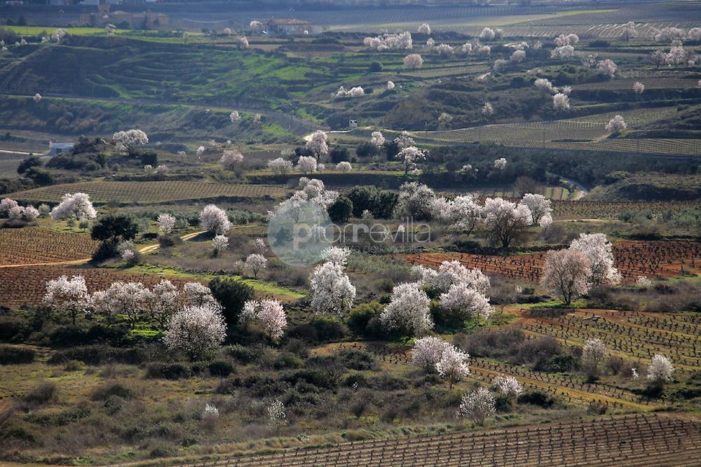 San Asensio. La Rioja. España ©Daniel Acevedo / PILAR REVILLA