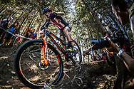 Team USA during the Women Elite Cross Country event at the 2018 UCI MTB World Championships - Lenzerheide, Switzerland