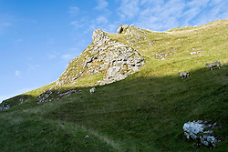 Winnats Pass Castleton Derbyshire. Once thought to have originated as a giant collapsed cavern, a more recent explanation is that it was a ravine between coral reefs that originally formed the limestone.<br /> The name is a corruption of 'wind gates' and local legend has it that the pass is haunted by a young couple were murdered by miners. <br />  11 October 2015<br />  Image © Paul David Drabble <br />  www.pauldaviddrabble.co.uk