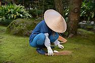 A female gardener wearing a straw conical hat working in a mossy aera of the Kenrokuen Garden, Kanazawa, Ishigawa, Japan