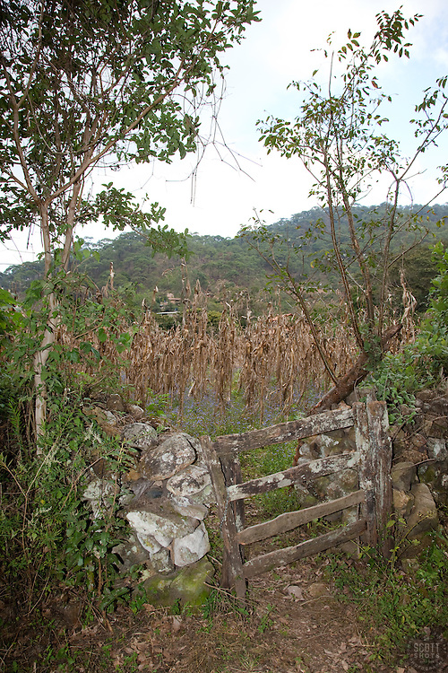 """""""Gate in San Sebastian"""" - This old gate was photographed in the small mountain town of San Sebastian, Mexico."""