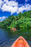 Kayaking on the Hanalei River, Hanalei, Kauai, Hawaii USA
