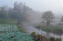 © Licensed to London News Pictures. 05/11/2020.  <br /> Eynsford, UK. A chilly looking River Darent in Eynsford, Kent this morning. Freezing cold foggy weather conditions as temperatures drop to -3 in some parts of the UK. Photo credit:Grant Falvey/LNP