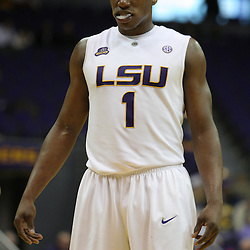 Jan 04, 2010; Baton Rouge, LA, USA;  LSU Tigers forward Tasmin Mitchell (1)during a game against the McNeese State Cowboys at the Pete Maravich Assembly Center. LSU defeated McNeese State 83-60.  Mandatory Credit: Derick E. Hingle-US PRESSWIRE