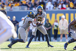 Sep 11, 2021; Morgantown, West Virginia, USA; West Virginia Mountaineers quarterback Jarret Doege (2) hands the ball to West Virginia Mountaineers running back Leddie Brown (4) as he runs for a touchdown during the first quarter against the Long Island Sharks at Mountaineer Field at Milan Puskar Stadium. Mandatory Credit: Ben Queen-USA TODAY Sports