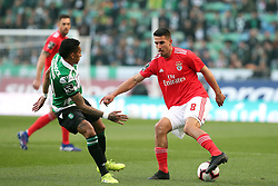 February 3, 2019 - Lisbon, Portugal - Benfica's midfielder Gabriel of Brazil (R ) vies with Sporting's midfielder Wendel from Brazil during the Portuguese League football match Sporting CP vs SL Benfica at Alvalade stadium in Lisbon, Portugal on February 3, 2019. (Credit Image: © Pedro Fiuza/NurPhoto via ZUMA Press)