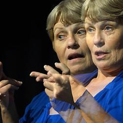 ASL interpreters in US