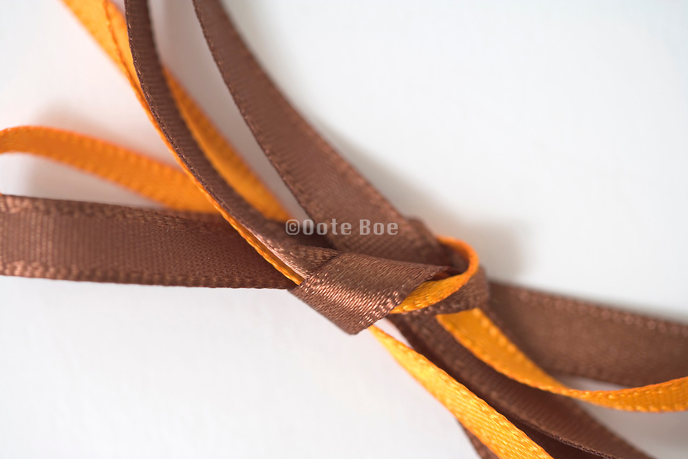 extreme close up of a gift wrap bow tie
