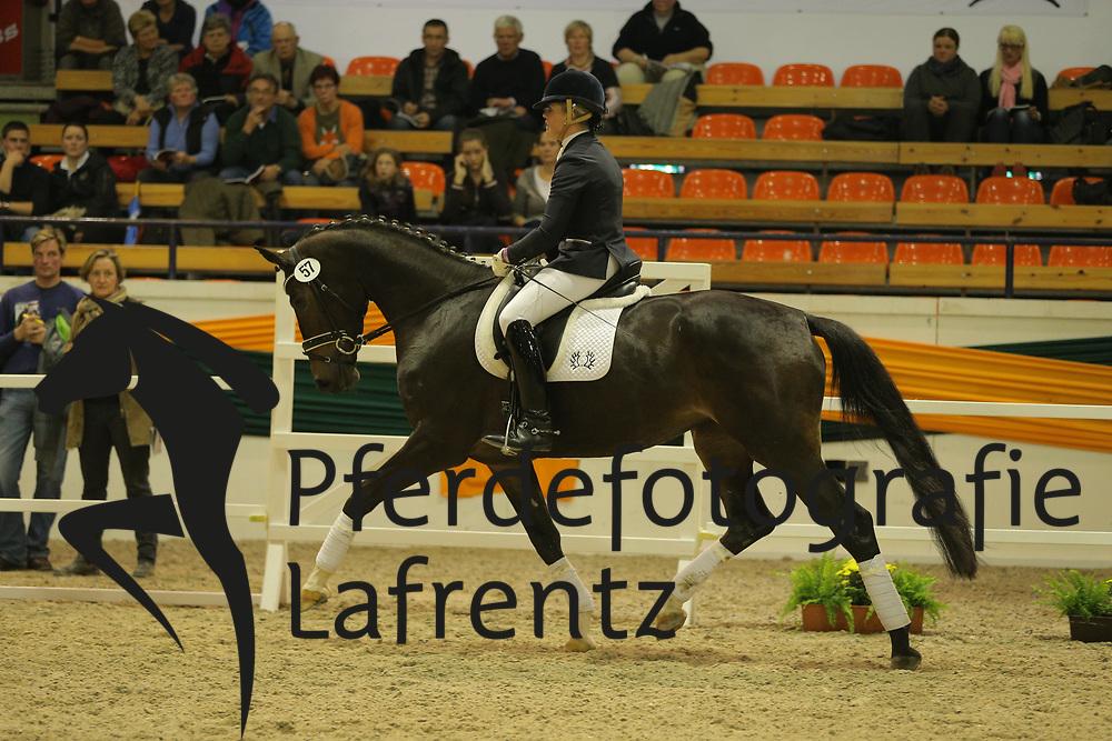 Frieling, Sandra, Ildika<br /> Trakehner Hengstmarkt 2013<br /> Präsentation, Reitpferde, Auktionsstuten<br /> © www.sportfotos-lafrentz.de / Stefan Lafrentz