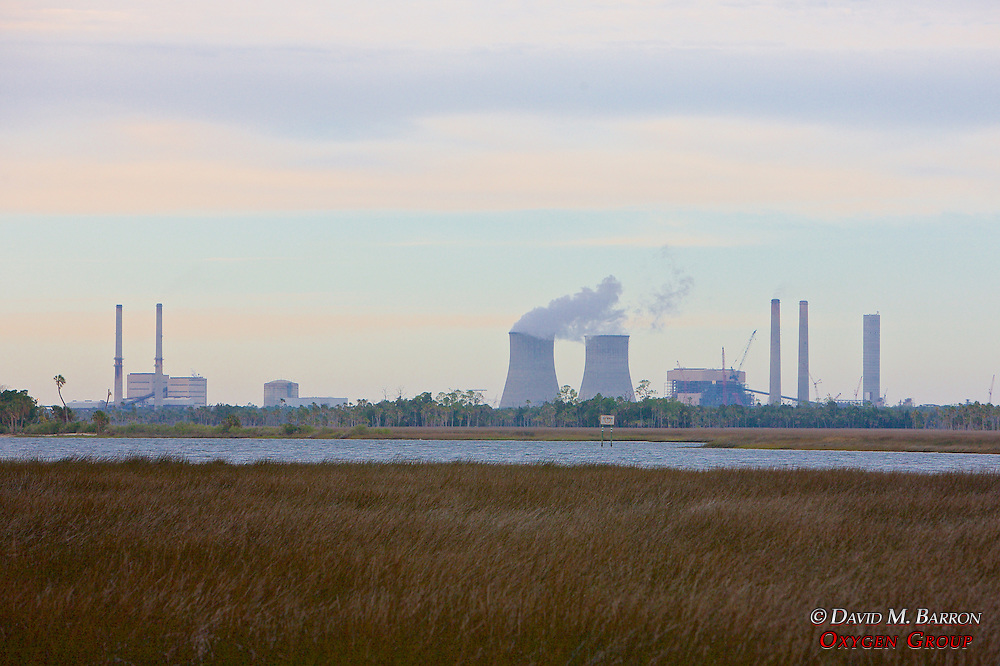 Power plant And Swamp