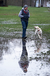 © Licensed to London News Pictures 16/01/2021.        Greenwich, UK. A man and his dog next to a very large puddle. The snowy weather turns to rain this afternoon with people getting out of the house from Coronavirus lockdown to exercise in Greenwich Park, London. Photo credit:Grant Falvey/LNP