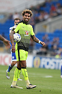 Danny Williams of Reading reacts in frustration at a decision that goes against him. EFL Skybet championship match, Cardiff city v Reading at the Cardiff city stadium in Cardiff, South Wales on Saturday 27th August 2016.<br /> pic by Andrew Orchard, Andrew Orchard sports photography.