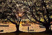 Sunset from Bayfront Park Sarasota, Florida