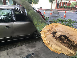 © Licensed to London News Pictures. 20/07/2017.  A Fallen branch from a tree crushed a car in Rancliffe Rd, East Ham,east London. Photo credit: ANDREW BAKER/LNP