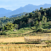 The rugged terrain near Vieng Xai in Houaphanh Province in northeastern Laos. In the foreground are rice fields, with rugged mountains in the background.
