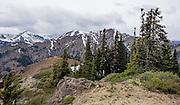 Teanaway Ridge Trail in late May, Wenatchee National Forest, Blewett Pass, Washington, USA