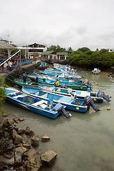 Fishing Boats Tied Up At Fish Market, Santa Cruz Island