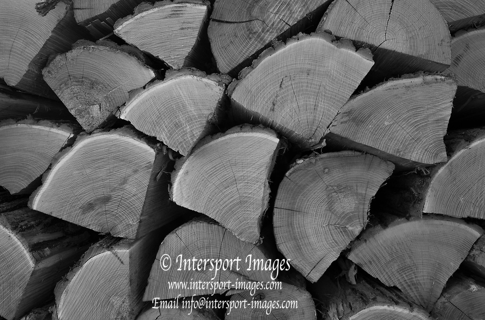Erba. Lake Pusiano. Province of Coma ITALY. General View, Winter Logs stacked ready for use. Sunday  01/01/2017<br /> <br /> © Peter SPURRIER,<br /> <br /> <br /> LEICA CAMERA AG - LEICA Q (Typ 116) - 1/80 - f5.6
