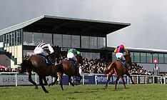 Exeter Races - Super Sunday - 11 February 2018