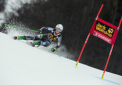 HOLTMANN Mina Fuerst of Norway competes during the 6th Ladies'  GiantSlalom at 55th Golden Fox - Maribor of Audi FIS Ski World Cup 2018/19, on February 1, 2019 in Pohorje, Maribor, Slovenia. Photo by Vid Ponikvar / Sportida