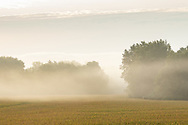 Morning fog over farm fields in Pine Island, N.Y., on Sept. 7, 2020.