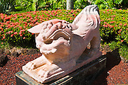 Chinese lion statue at the Kauai Marriott Resort, Island of Kauai, Hawaii