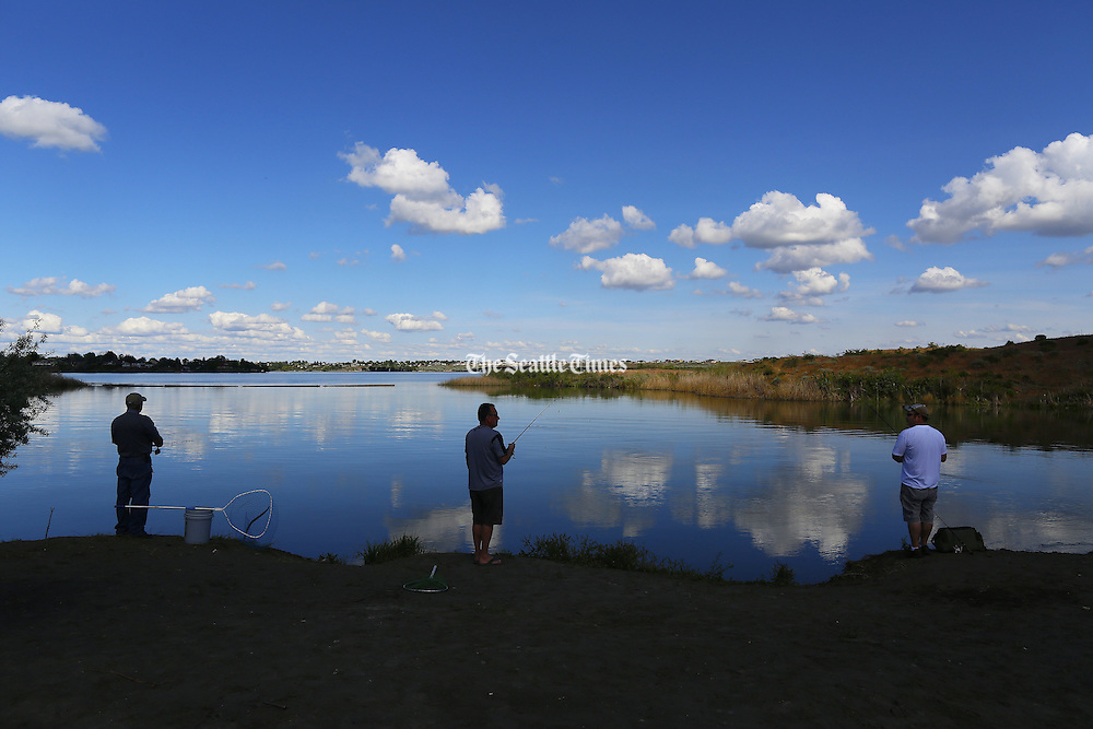 Fishermen gather along the south shore of Moses Lake. (Mark Harrison / The Seattle Times)