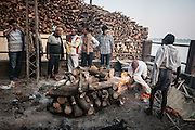 EXCLUSIVE<br /> Where funeral fires forever burn: Incredible photos show the 'Manikarnika Ghats' holy festival on the Ganges where Hindus make their final journey find 'moksha' and reach nirvana<br /> <br /> On the western bank of the Ganges in the ancient city of Varanasi, the fires of the Manikarnika Ghats have been burning for thousands of years.<br /> This holy city, in Uttar Pradesh, India, is the most sacred place on earth for Hindus and it is believed that if a person's ashes are scattered here then their soul will finally achieve nirvana (moksha). <br /> But to liberate the soul, the worn-out body must first be burned. <br /> A series of stunning and rare images, captured by photographer Michal Huniewicz, give a remarkable insight into the last hours of the Hindu body at Manikarnika Ghats - the largest cremation site in Varanasi.<br /> <br /> Up to 300 people a day are cremated at this 'burning ghat', named for the steps that lead down to a body of holy water.<br /> For centuries, the old and sick have flocked to the site to die here on the banks of the Ganges, and special buildings on the site are reserved for those awaiting their final hours.<br /> But the atmosphere at the giant funeral site is not one of sorrow, as mourners instead laugh, chat and play cards as the funeral preparations are carried out.<br /> The Hindu attitude to death is not one of loss, but instead follows the idea of 'shedding' the worn-out body, as one might throw away clothes that are too worn-out to wear.<br /> The Varanasi site is a hive of activity, families weave between the piles of wood gathered for burning bodies; livestock amble around funeral parties; and spectators and tourists mill around observing ceremonies.<br /> The funeral process is vital in achieving nirvana, and the ritual's many stages must be perfectly performed or the soul won't find its way in the afterlife. <br /> <br /> To begin, the remains are carried through the alleyways of the old city to the holy Gange