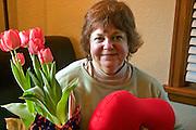 Woman age 64 enjoying her birthday tulips and heart pillow.  St Paul Minnesota USA