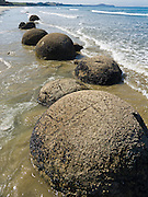 South Pacific Ocean waves released the spherical Moeraki Boulders onto Koekohe Beach, between Moeraki and Hampden on the Otago coast, South Island, New Zealand. These ancient concretions grew 2 meters (6 feet) in diameter over 4 to 5.5 million years from marine mud (Moeraki Formation mudstone) near the surface of the Paleocene sea floor.  After the concretions formed, large cracks (septaria) formed and filled with brown calcite, yellow calcite, and small amounts of dolomite and quartz when a drop in sea level allowed fresh groundwater to flow through the enclosing mudstone.