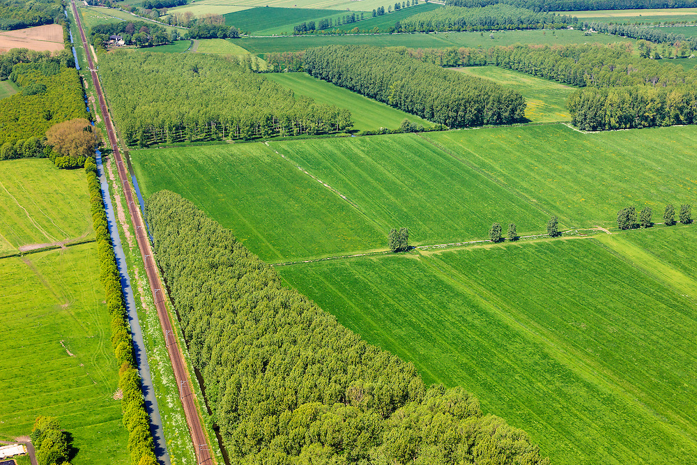 Nederland, Gelderland, Gemeente Geldermalsen,  27-05-2013; bosplantages rond de Dwarssteeg, ten noorden van <br /> Marienweerd en de Linge (tussen Beesd en Tricht). Spoorlijn Geldermalsen - Gorinchem.<br /> Forest plantations, wood cultivation (Central Holland).<br /> luchtfoto (toeslag op standard tarieven)<br /> aerial photo (additional fee required)<br /> copyright foto/photo Siebe Swart