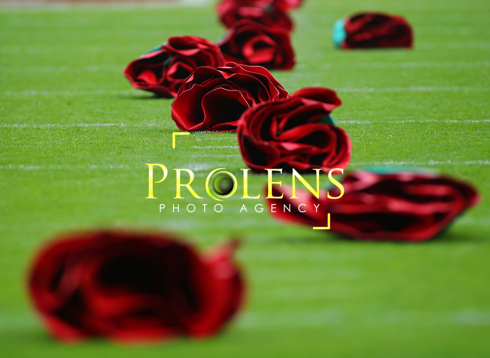 NFL International Series 2016 Washington Redskins @ Cincinnati Bengals 30th OCT 2016<br /> <br /> A field of poppies to represent 100 years since the Flanders Battle  during game 17 of the NFL International Series between the  Washington Redskins and Cincinnati Bengals, From Wembley Stadium, London.<br /> <br /> Pic Micthell Gunn / PLPA? ProLens Photo Agency.<br /> Sunday 30 October 2016