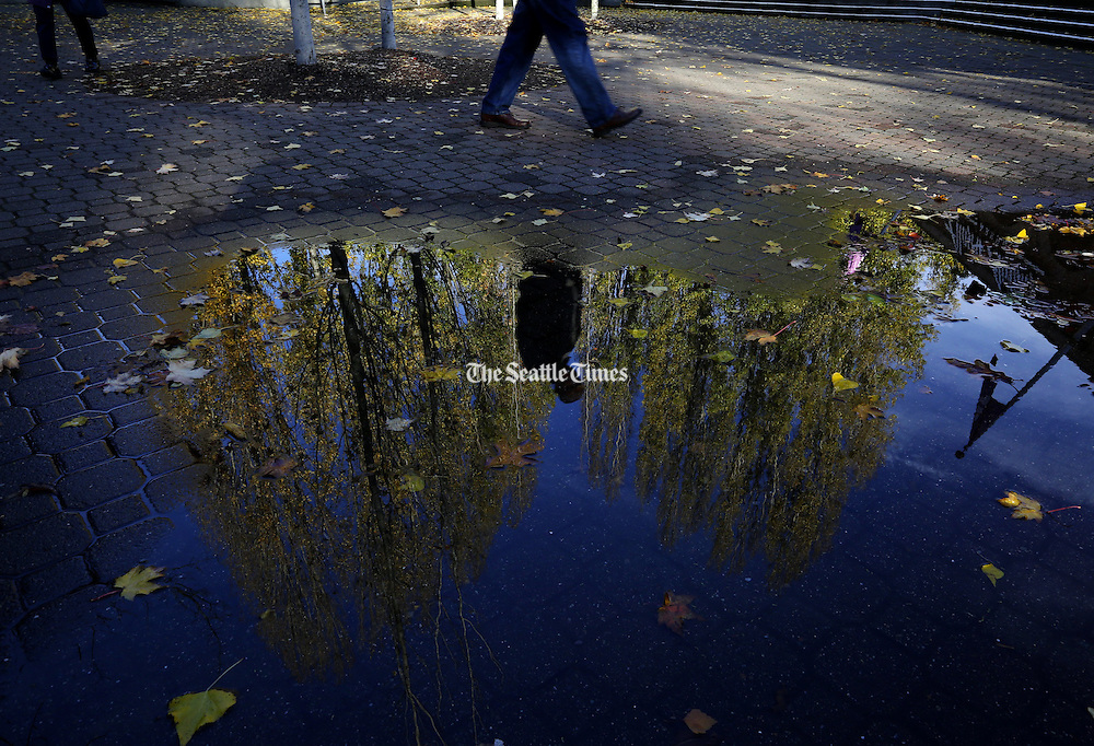 A man walking near Husky Stadium passes a reflection of the first blue skies seen in days, after an abundance of Seattle rain temporarily subsides.<br /> Ken Lambert / The Seattle Times