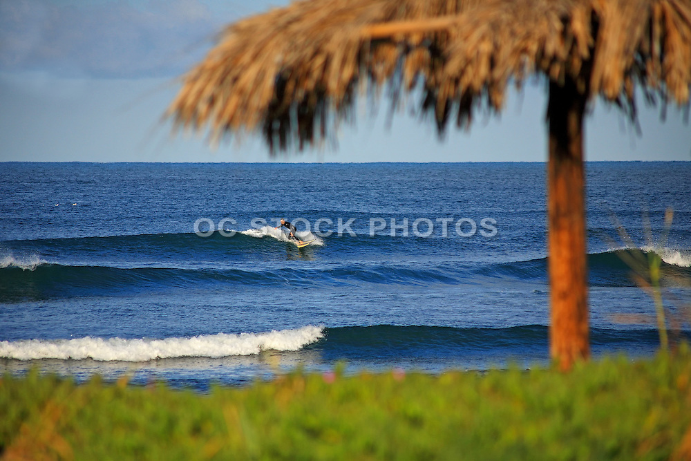 Local Surfer At Old Man's Beach In San Clemente California