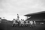 English forward Horton gets ball from line out,..Irish Rugby Football Union, Ireland v England, Five Nations, Landsdowne Road, Dublin, Ireland, Saturday 13th February, 1965,.13.2.1965, 2.13.1965,..Referee- H S Laidlaw, Scottish Rugby Union, ..Score- Ireland 5 - 0 England, ..Irish Team, ..T J Kiernan,  Wearing number 15 Irish jersey, Full Back, Cork Constitution Rugby Football Club, Cork, Ireland,..P J Casey, Wearing number 14 Irish jersey, Right Wing, Landsdowne Rugby Football Club, Dublin, Ireland, ..M K Flynn, Wearing number 13 Irish jersey, Right Centre, Wanderers Rugby Football Club, Dublin, Ireland, ..K J Houston, Wearing number 12 Irish jersey, Left Centre, Bruff Rugby Football Club, Limerick, Ireland, and, Oxford University Rugby Footabll Club, Oxford, England,..P J McGrath,  Wearing number 11 Irish jersey, Left Wing, University college Cork Rugby Football Club, Cork, Ireland,..C M H Gibson, Wearing number 10 Irish jersey, Stand Off, Cambridge University Rugby Football Club, Cambridge, England, and, N.I.F.C, Rugby Football Club, Belfast, Northern Ireland, ..R M Young, Wearing number 9 Irish jersey, Scrum Half, Queens University Rugby Football Club, Belfast, Northern Ireland,..S MacHale, Wearing number 1 Irish jersey, Forward, Landsdowne Rugby Football Club, Dublin, Ireland, ..K W Kennedy, Wearing number 2 Irish jersey, Forward, Queens University Rugby Football Club, Belfast, Northern Ireland,..R J McLoughlin, Wearing number 3 Irish jersey, Captain of the Irish team, Forward, Gosforth Rugby Football Club, Newcastle, England, ..W J McBride, Wearing number 4 Irish jersey, Forward, Bective Rangers Rugby Football Club, Dublin, Ireland,  ..W A Mulcahy, Wearing number 5 Irish jersey, Forward, Bective Rangers Rugby Football Club, Dublin, Ireland,  ..M G Doyle, Wearing number 6 Irish jersey, Forward, University College Dublin Rugby Football Club, Dublin, Ireland,..R A Lamont, Wearing number 8 Irish jersey, Forward, Instonians Rugby Football Club, Belfast, Northern Ire