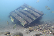 Underwater Scene (old pallet style fish crib)<br /> <br /> Roger Peterson/Engbretson Underwater Photography