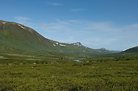 View north up Tarradalen - Tarra Valley from south border of Padjelanta national park, Padjelantaleden Trail, Lapland, Sweden
